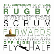 TFS8 - Rugby