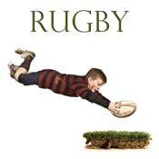 SP6 - Rugby